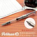 【Pelikan】ペリカン Souveran スーベレーン 805 刻印入り シルバートリム デモンストレーター 万年筆 ロジウム装プレート18金ペン先 ペン先EF〜B スケルトン PE-M805DS
