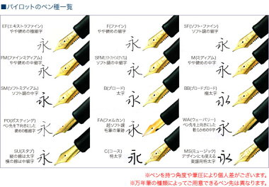 送料無料【Namiki高級蒔絵万年筆鶴と亀ペン種:MFN-5M-TK-M】日本の伝統的な柄を平蒔絵技法でデザインした高級万年筆[PILOT]