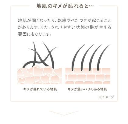 【新発売】ヘア&スキンキメア(KIMEA)シャンプー・トリートメントセット(スカルプピュアクレンズ&ヘアモイスチャークリーム)各300ml|シャンプートリートメントヘアシャンプーヘアトリートメントスキンケアヘアケアヘアモイスチャーうねりくせ毛美髪