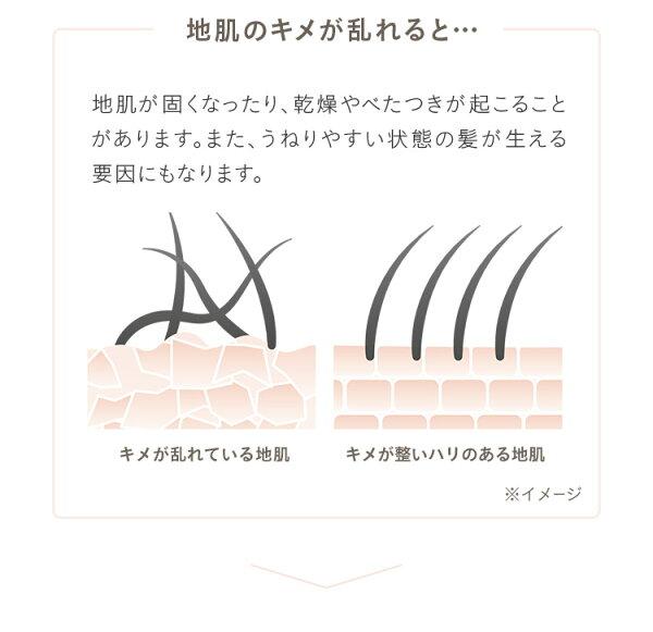 ヘア&スキンキメア(KIMEA)スカルプピュアクレンズ(シャンプー)orヘアモイスチャークリーム(トリートメント)各300ml