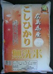 無洗米 広島県産こしひかり5kg  4560104760102:食品(直)