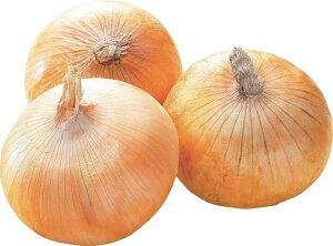 玉ねぎ Lサイズ 20kg 北海道産 (フジアグリフーズ)*画像はイメージです。