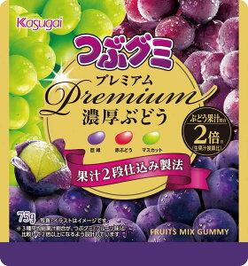 春日井 つぶグミpremium濃厚ぶどう 75g まとめ買い(×10)