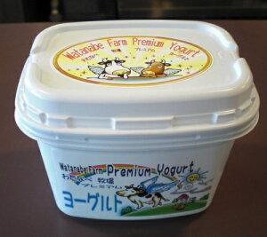 わたなべ牧場 プレミアムヨーグルト 450g×6個 (送料込み) 乳製品