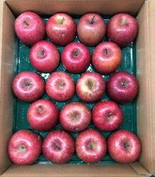 青森県産 サンふじ 18個 松作 キズ有り りんご【送料無料】|89779:フルーツ・果物