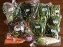 【エントリーでポイント5倍! 〜7/21 01:59まで】香川県 有機野菜セットB 14098:野菜