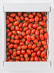 【エントリーでポイント5倍! 12/1 10:00 - 1/1 9:59まで】【産地直送】熊本県産アイコトマト 3kg ミニトマト とまとリコピン|14699:野菜