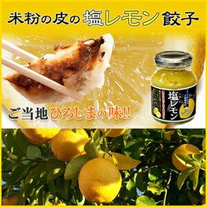 送料無料 塩レモン餃子 20個入り 井辻食産株式会社