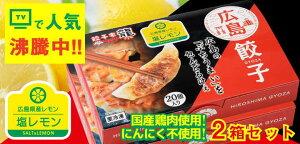 ひろしま塩レモン餃子 2箱入り(井辻食産)(stk-206-91769) | 餃子 ぎょうざ 広島 名物 餃子家 龍 餃子家龍 ギフト