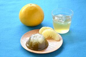 沢渡茶と土佐文旦のゼリーセット (ビバ沢渡)(stk-259-59328)| お茶 茶 沢渡茶 土佐文旦 ゼリー 食べ物 食品