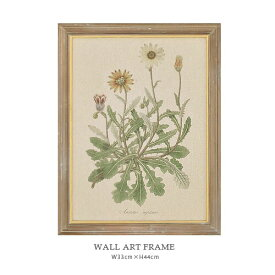 WALL ART FRAME ウォールアート フレーム (F) アンティーク 額縁 ボタニカル W33×H43cm 壁掛け ディスプレイ ウォールフレーム【あす楽対応】
