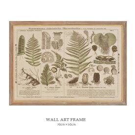 WALL ART FRAME ウォールアート フレーム (C) アンティーク 額縁 ボタニカル W70×H50cm 壁掛け ディスプレイ ウォールフレーム【あす楽対応】