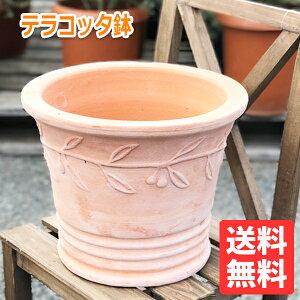 テラコッタ 8号鉢 植木鉢 中型 素焼き鉢 アンティーク 販売 おしゃれ オリーブ柄 テラコッタ鉢
