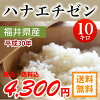 2017年生产福井县生产hanaechizen白米10kg北海道、冲绳、一部分孤岛之外的拥挤,是大米花越前