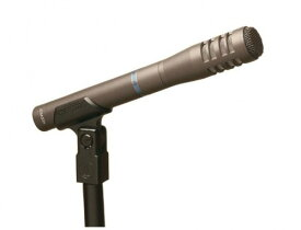 Audio-Technica AT8033 Cardioid Condenser Microphone 「汎用品」(海外取寄せ品)