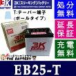 【12ヶ月保証付】EB25Tポールタイプ(テーパー端子)3K[スリーキング]【RCP】