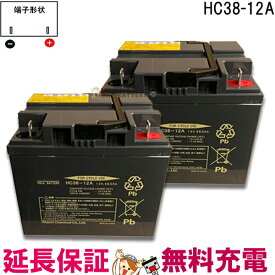 2個セット 12ヶ月保証付 HC38-12A 電動車椅子 バッテリー シニアカー 電動カート 日立 サイクルバッテリー 【互換】 SC38-12 SER38-12 WP40-12NE