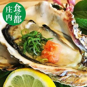 天然 岩ガキ 中サイズ生食用 送料無料 1kg(5〜7個) 岩牡蠣 殻付き バーベキュー BBQ お中元 ギフト 【楽ギフ_のし】