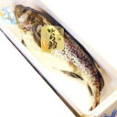 真鱈 寒鱈 オス 白子 2.5kg〜3kg丸ごと1尾 送料無料 寒鱈 鍋 白子 タラコ 山形県産天然 マダラ 真ダラ 寒ダラ 鱈 食の…