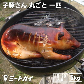 豚丸焼きに!仔豚・子豚さん丸ごと1匹(冷凍・生)≪雑誌掲載商品≫-P108