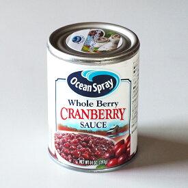 クランベリーソース (つるこけももの缶詰)-DR010