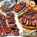 (お盆も営業中)バーベキューセットA 合計約2.5kg!!究極のバーベキュー肉(洋風焼肉セット・BBQセット)≪雑誌掲載…