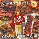 (お盆も営業中)バーベキューセットB 合計4.6kg(10人前)〜!究極のバーベキュー肉(洋風焼肉セット・BBQセット/ブ…