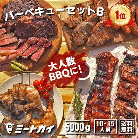 (お盆も営業中)バーベキューセットB 合計4.6kg(10人前)〜!究極のバーベキュー肉(洋風焼肉セット・BBQセット/ブロック肉、生ソーセージ、BBQソースなど)お得さ福袋級!-SET101