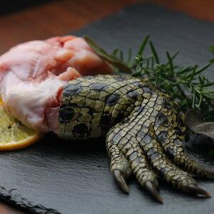 ワニ肉 (ワニ足) 骨付き足 Crocodile Legs Bone-in (300g-399g) SKU508