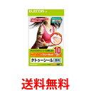 ELECOM EJP-TATA410 エレコム EJPTATA410 タトゥシール 透明 A4 10枚 送料無料 【SJ06292】