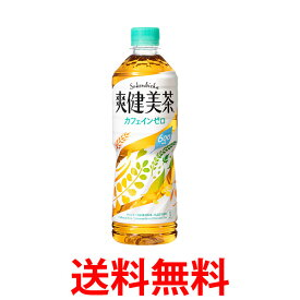 コカ・コーラ社製品 爽健美茶 600mlPET ペットボトル 2ケース 48本 送料無料 【d07-2】