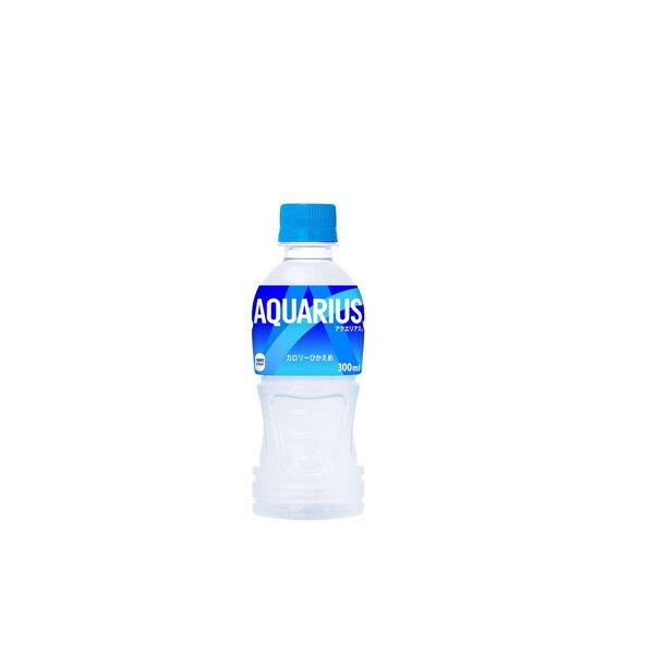 コカ・コーラ社製品 アクエリアス300mlPET 2ケース 48本 ペットボトル ※数量は48本単位でご注文下さい 送料無料 【d119-48c2】