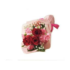 母の日ギフト バラとスプレーカーネーションの花束 花ギフト プレゼント 送料無料 【ST216727015】