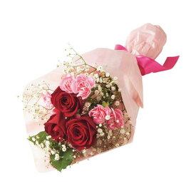 母の日ギフト バラとスプレーカーネーションの花束 花ギフト プレゼント 送料無料 【ST216759014】