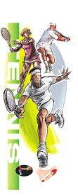 DSIS ソルボテニス テニス用インソール テニス インソール 瞬発力 アップ 衝撃吸収 足のトラブル 負荷 軽減 動作 バランス ブルー グレー 足底 グリップ力 FM