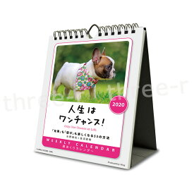 WI-101 人生はワンチャンス! 週めくり カレンダー 2020年 ウイング LW101 卓上 壁掛け 〈 犬 ドッグ カレンダー 写真 〉FM