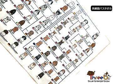 犬の系統図バスタオルユニークおもしろグッズThreeBスリービーオリジナルアイテム