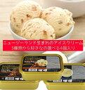 【送料無料!!】【アイガー】3種類から選べるニュージーランドアイスクリーム 800ml 4個セット☆