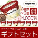 敬老の日 ギフト アイスクリーム ハーゲンダッツ アイスクリーム ギフト セット12個 アイス お礼 お返し 内祝い 出産…