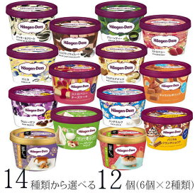 ハーゲンダッツ アイスクリーム ミニカップ 14種類から2種類選べる福袋12個(6個×2種類)セット