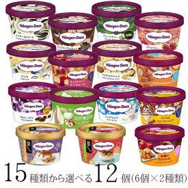 ハーゲンダッツ アイスクリーム ミニカップ 15種類から2種類選べる福袋12個(6個×2種類)セット