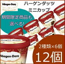 [20%OFF] ハーゲンダッツ アイスクリーム ミニカップ 16種類から2種類選べる12個(6個×2種類)セット
