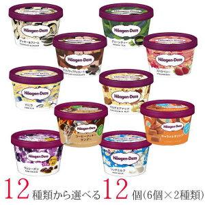 ハーゲンダッツ アイスクリーム ミニカップ 12種類から2種類選べる福袋12個(6個×2種類)セット