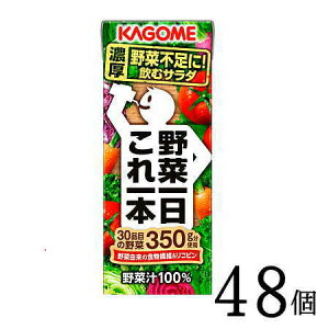 野菜ジュース 野菜一日これ一本200ml×24本×2ケース(48本)  カゴメ ビタミン