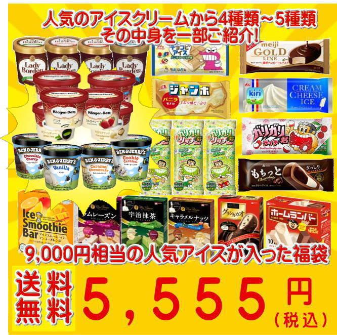 超お買い得! アイスクリーム福袋 (中身は当店にお任せ)合計40〜50個のアイスクリームが入って送料無料! ss10