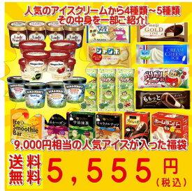超お買い得! アイスクリーム福袋 (中身は当店にお任せ)合計40〜50個のアイスクリームが入って送料無料!199ss10