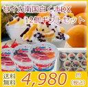 「500円オフクーポン配布中!」 お中元 セイカ 南国白くまDX×12個ギフトセット