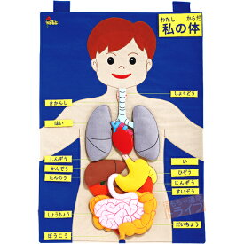 楽天市場 知育玩具 布製 タペストリーの通販