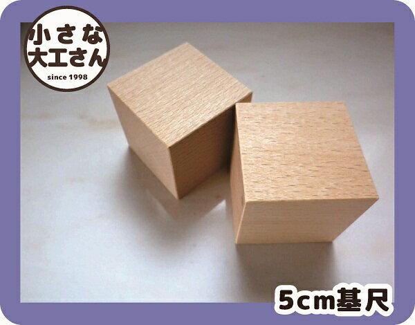 【積み木単品】 50ミリ基尺ブロック50ミリ基尺の立方体積木 白木の積み木