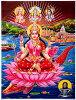 神 Lakshmi 美麗和財富的波光粼粼,印度的印度教神海報 [45 釐米 x 30.5 釐米] 拉克希米拉什拉克希米拉克西米排燈節排燈節裝飾藝術畫好運氣運氣運氣 |